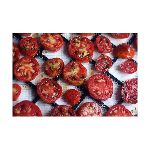 Tomater från torkugn